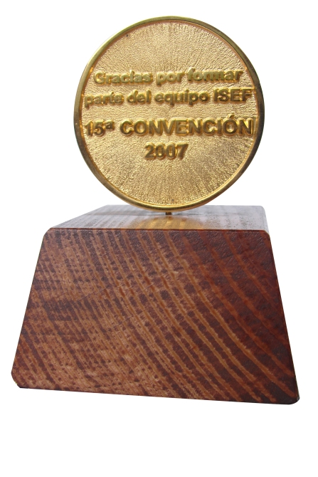 moneda con base de madera ok